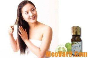 Tác dụng kỳ diệu của vỏ bưởi đối với tóc, da và sức khỏe
