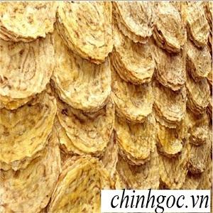 Chuối ép khô Kon Tum