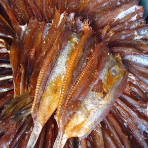 Khô Cá Mối